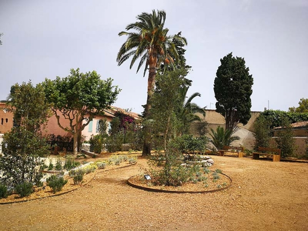jardin_maison_commandant_01.jpg