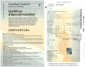 certificat_dimmat.jpg